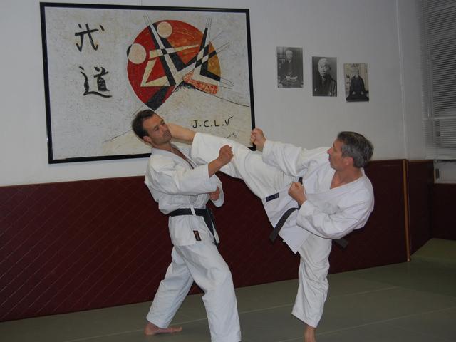 club karate lyon
